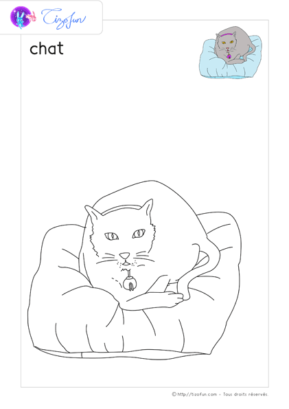 animal-ferme-dessin-a-colorier-chat-coloriage-42