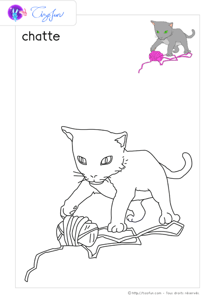 animal-ferme-dessin-a-colorier-chatte-coloriage