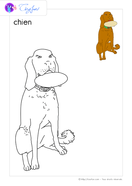 animal-ferme-dessin-a-colorier-chien-coloriage-48